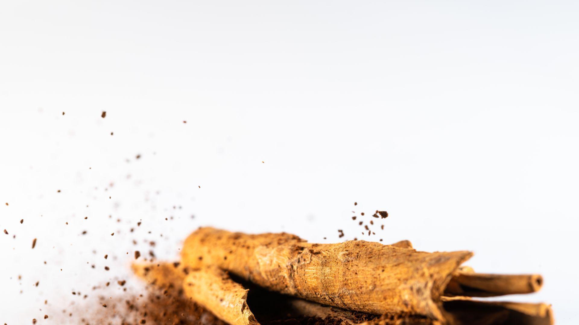 Cinnamon Extract 4:1