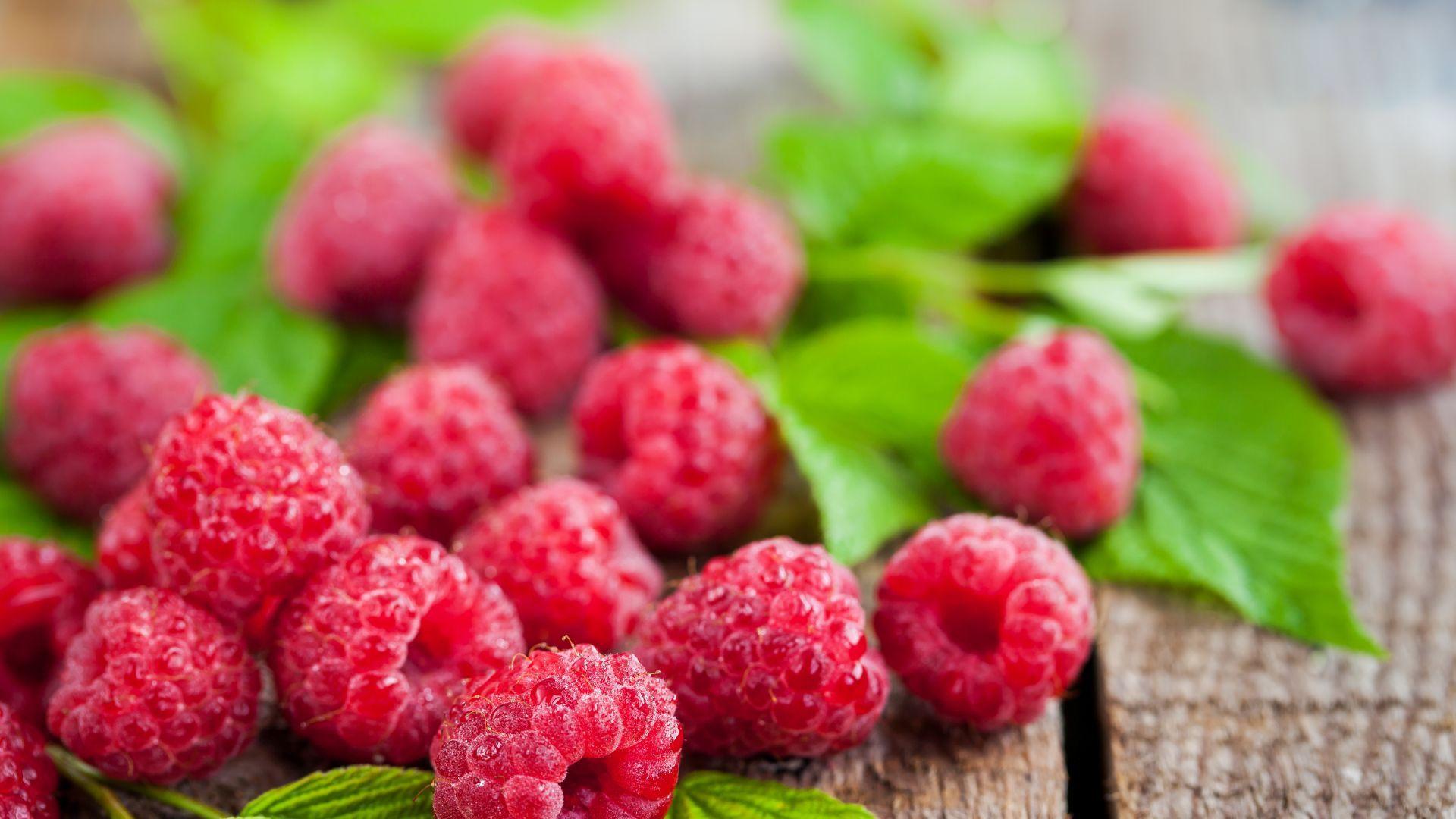 Raspberry Ketone - Natural